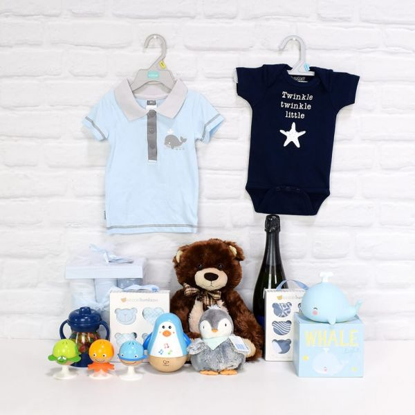 Celebration Basket for a Baby Boy