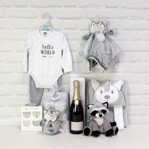 Baby Fun & Celebration Basket